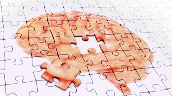 Un cerebro para la vida y la esperanza